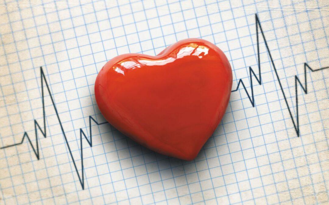 A Wellness Approach to Heart Disease